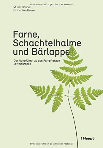 Farne, Schachtelhalme und Bärlappe: Der Naturführer zu den...