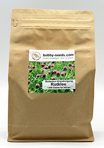 Bodenkur Rotklee - staudige Gründüngung/Futterpflanze 1KG