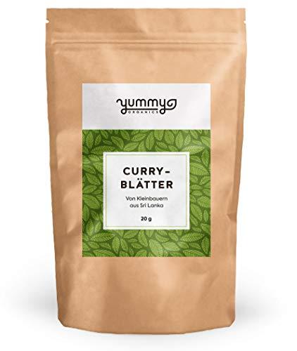 Curryblätter getrocknet, 20 g Beutel | fair gehandelt von Kleinbauern...