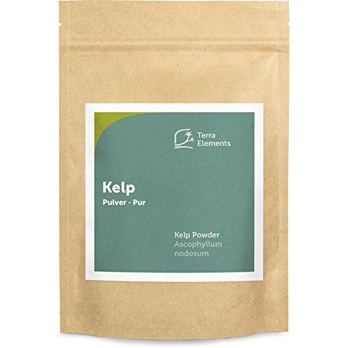 Terra Elements Kelp Pulver, 250 g I Knotentang I Braunalge I...