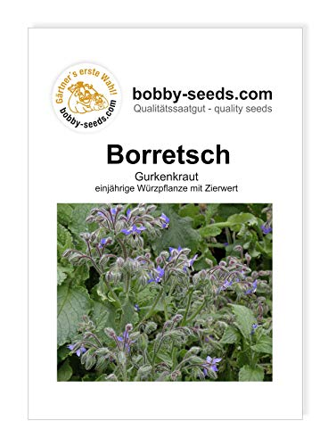 Borretsch, Gurkenkraut von Bobby-Seeds Portion