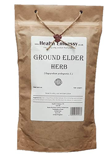 Health Embassy Giersch Kraut Tee (Aegopodium Podagraria L.) /Ground...