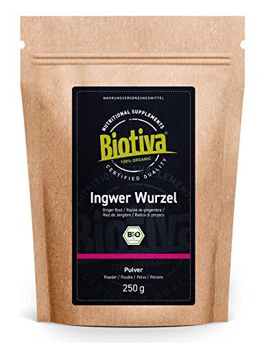 Ingwerpulver Bio 100g - Ingwer - Ingwerwurzel gemahlen - z.B. für...