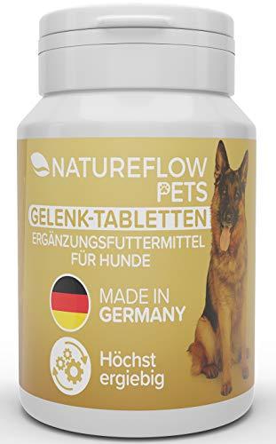Gelenktabletten für Hunde - mit Grünlippmuschel, MSM und...
