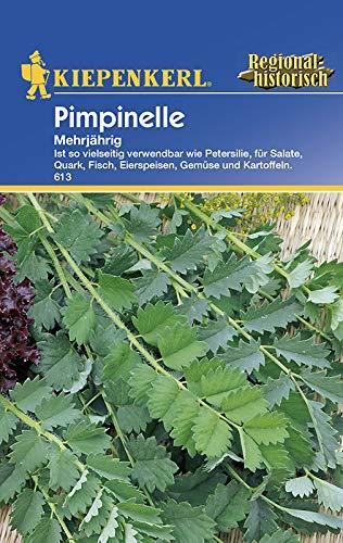 Kiepenkerl 613 Pimpinelle (Pimpinellensamen)