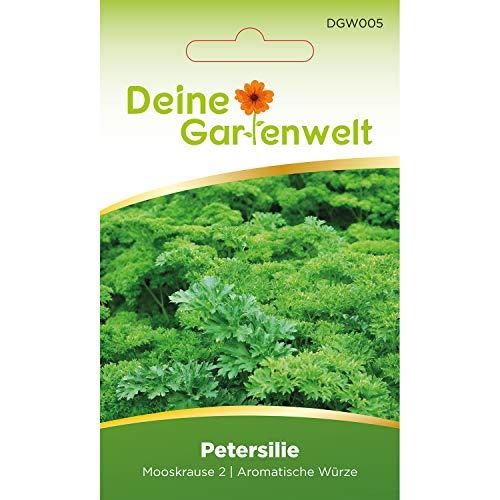 Petersilie Samen (Mooskrause 2) | Petersiliesamen | Saatgut für...