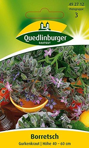 Quedlinburger Borretsch, Gurkenkraut, 1 Tüte Samen