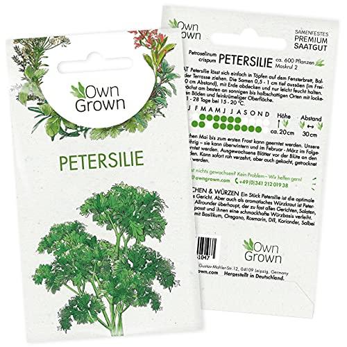 Petersilie Samen: Premium Petersilie Saatgut für ca. 600 Petersilie...