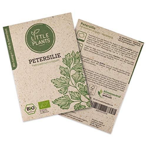 Little Plants BIO-Petersiliesamen (Petroselinum crispum)...