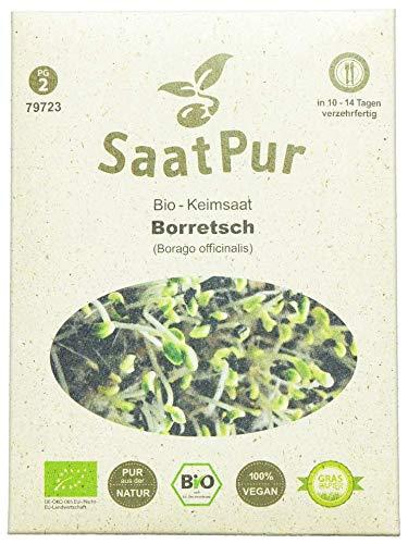 SaatPur Bio Keimsprossen - Borretsch - Keimsaat für die Sprossenzucht...