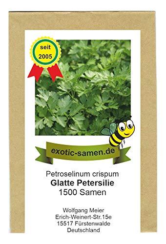 Petersilie glatt - Bienenweide - Petroselinum crispum - 1500 Samen