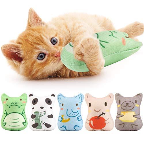 Dorakitten 5 Stück Katzenspielzeug Set : Katzenminze Spielzeug zum...