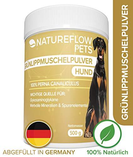 Natürliches Grünlippmuschelpulver Hund - 500g Grünlippmuschel für...