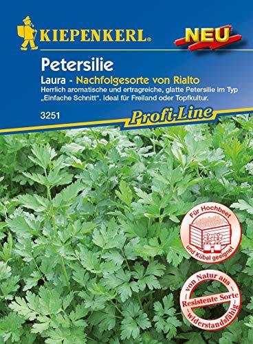 Petersilie Laura, herrlich aromatische und ertragreiche glatte...