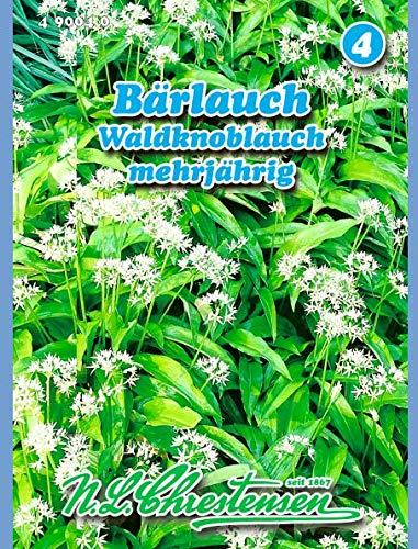Bärlauch, Waldknoblauch mehrjährig N.L.Chrestensen Samen 490040-B